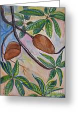Tropical Fruit Mamey Greeting Card