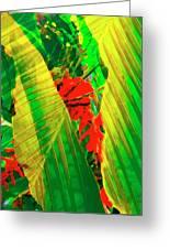 Tropical Fusion Greeting Card