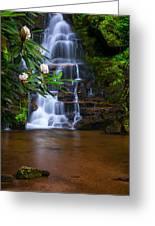 Tropical Garden Greeting Card