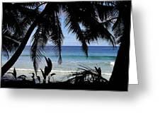 Tropical Hole Greeting Card