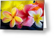 Tropical Melange Greeting Card