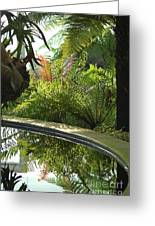 Tropical Mirror Greeting Card