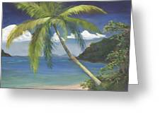 Tropical Palm Greeting Card