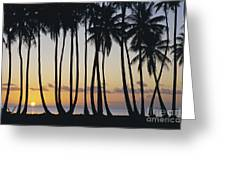 Tropical Palm Sunset Greeting Card