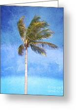 Tropical Palm Tree Greeting Card