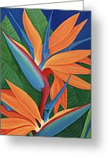 Tropical Paradise Greeting Card by Lisa Bentley