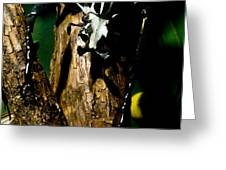 Tropical Scarab Greeting Card