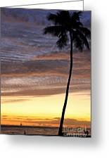 Tropical Silhouette Greeting Card