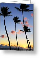 Tropical Sunrise Greeting Card