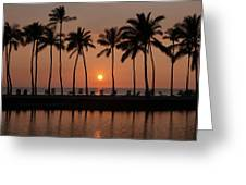 Tropical Sunset Silhouettes  Greeting Card