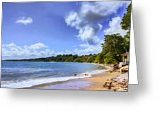 Tropical Waters Greeting Card