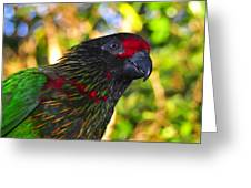 Tropical Wonder Greeting Card