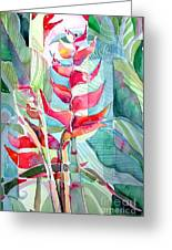 Tropicana Red Greeting Card by Mindy Newman