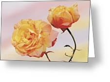 Tropicana Roses Greeting Card
