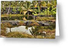 Tropics Greeting Card