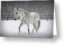 Trot In The Snow Greeting Card