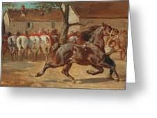 Trotting A Horse Greeting Card