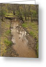 Trout Brook Scene 1 B Greeting Card
