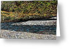 Trout Creek Greeting Card