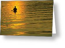 Trout Fishing At Sunset Greeting Card