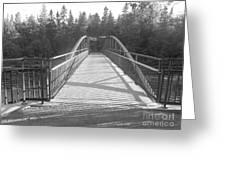 Trowbridge Falls Bridge Bw Greeting Card