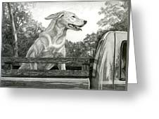 Truck Queen Study Greeting Card