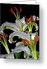 True Lilies Greeting Card by Andy Za