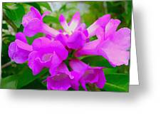Trumpet Flower 1 Greeting Card