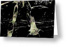 Trumpet Flowers Greeting Card