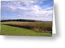 Trusting Harvest Greeting Card