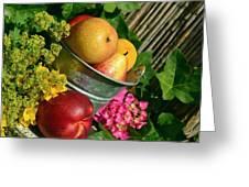 Tub Of Apples Greeting Card