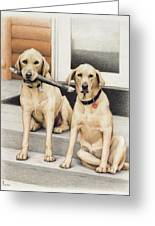 Tucker And Lily Greeting Card