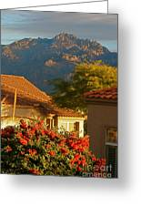 Tucson Beauty Greeting Card