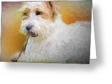Tuffy The Russell Terrier Greeting Card