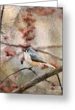 Tufted Titmouse 2 Greeting Card