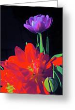 Tulip 15 Greeting Card