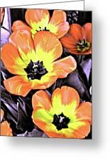 Tulip 16 Greeting Card