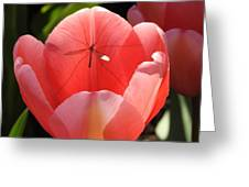 Tulip And The Crane Fly Greeting Card