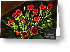 Tulip Beauties Greeting Card