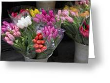 Tulip Bouquets Greeting Card
