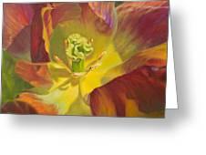 Tulip Closeup No. 1 Greeting Card