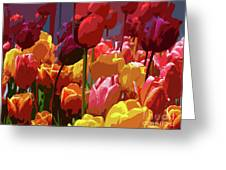 Tulip Confusion Greeting Card
