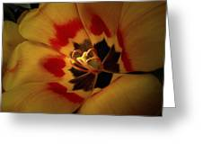 Tulip Flair Greeting Card