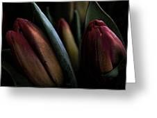 Tulip Grunge Greeting Card