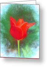 Tulip In Abstract. Greeting Card
