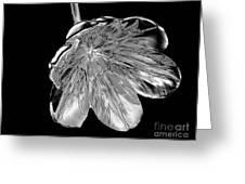 Tulip Liquid Metal Greeting Card