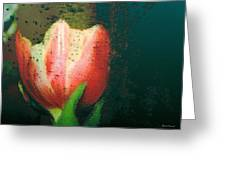 Tulip Of Love Greeting Card