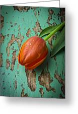 Tulip On Old Green Table Greeting Card