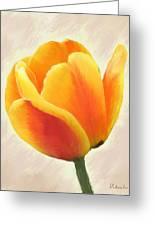 Tulip Orange Greeting Card