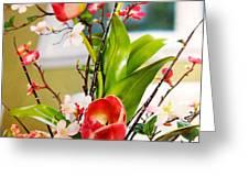 Tulip Series Greeting Card